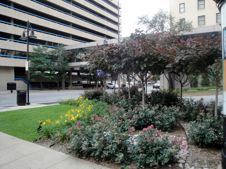 Harwood Pocket Park Corner